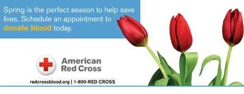 image of flowers from red cross
